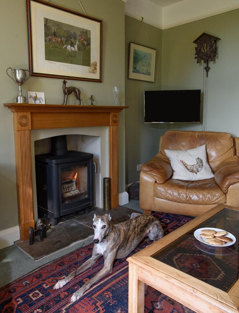 Contura 51L in Sitting Room Oxford